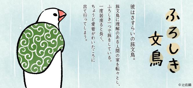ふろしき文鳥とは